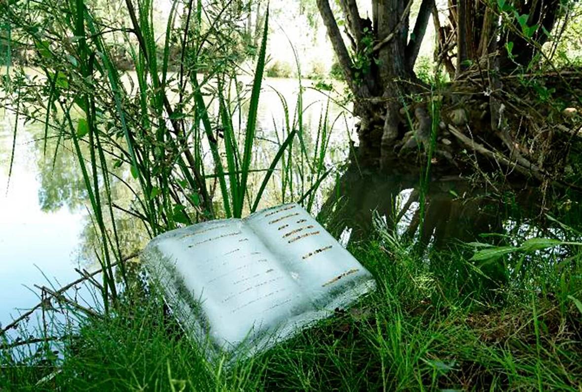 Bernesga River Book. 2017. Basia Irland. Cortesía MUSAC, Museo de Arte Contemporáneo de Castilla y León.